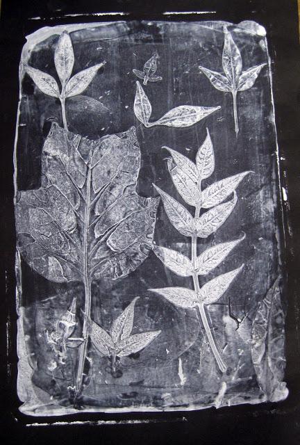 Gelatin Leaf Print (second print), Second Grade