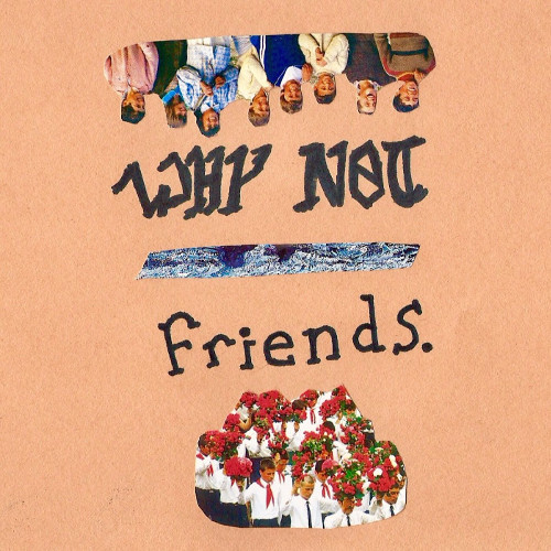 why-not-friends 500x500.jpg