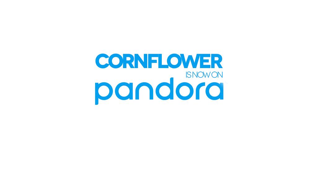 2012-Pandora.jpg