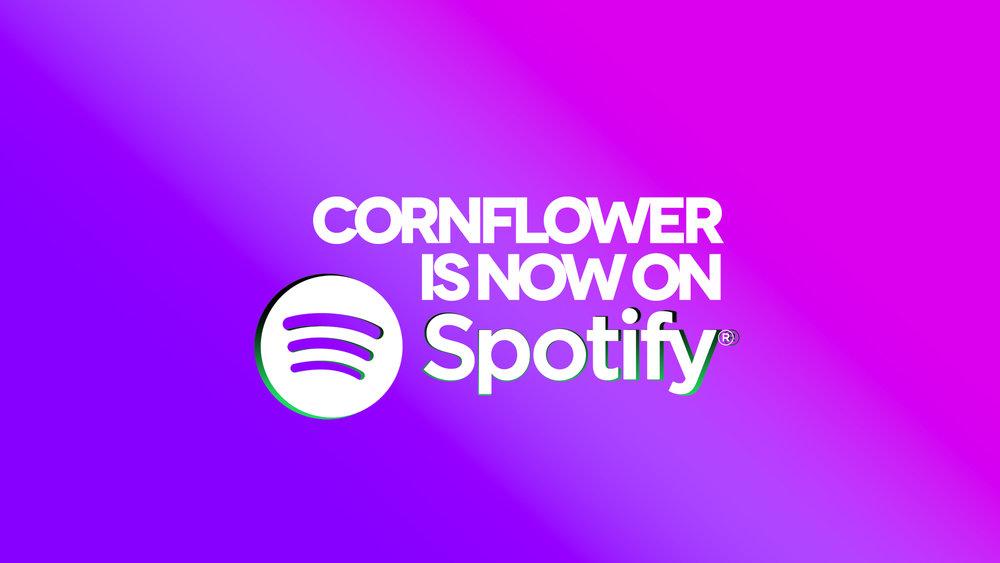2013-Spotify.jpg