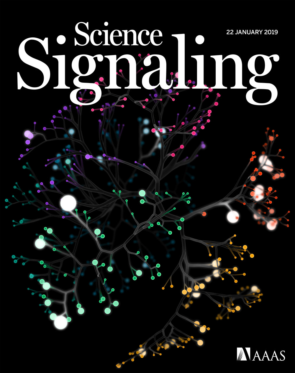 ScienceSignalingCover.jpeg