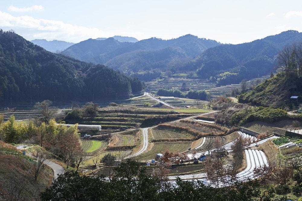 Asukamura (Asuka Village)