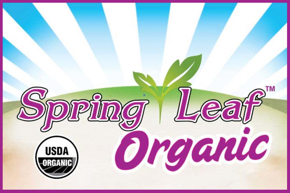 Spring-Leaf-logo.jpg