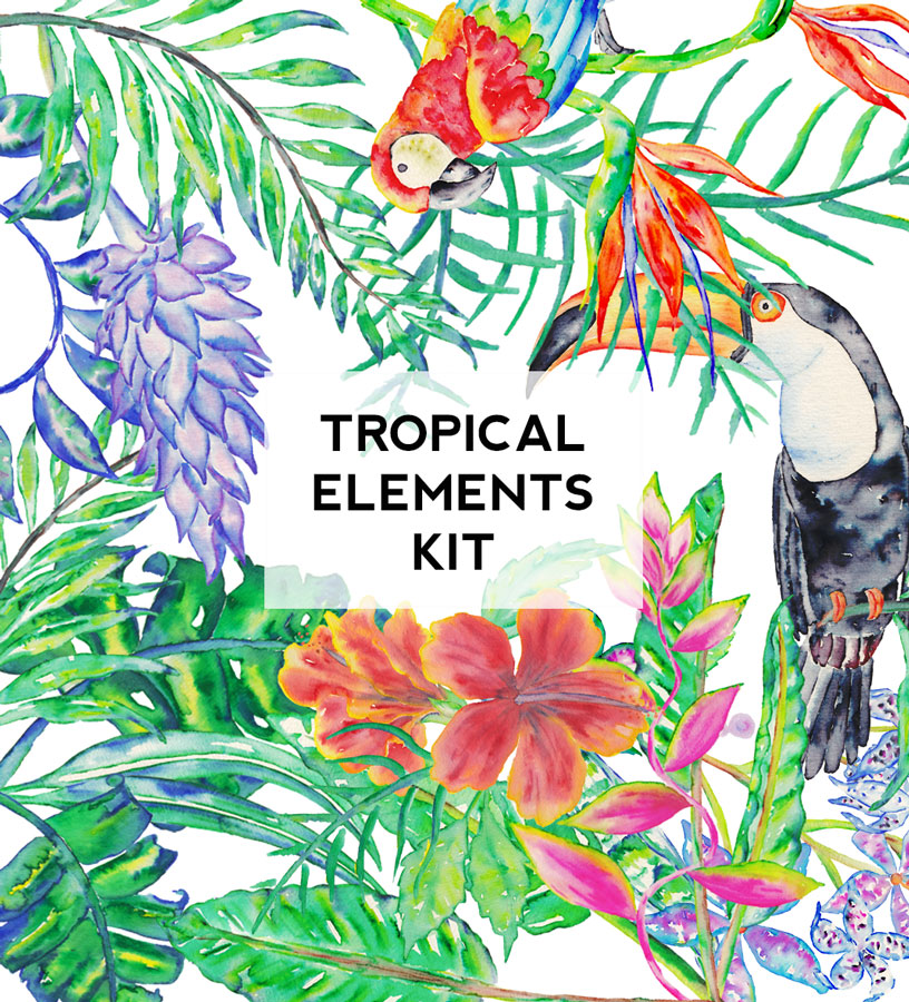 Tropical-kit-bouquets.jpg