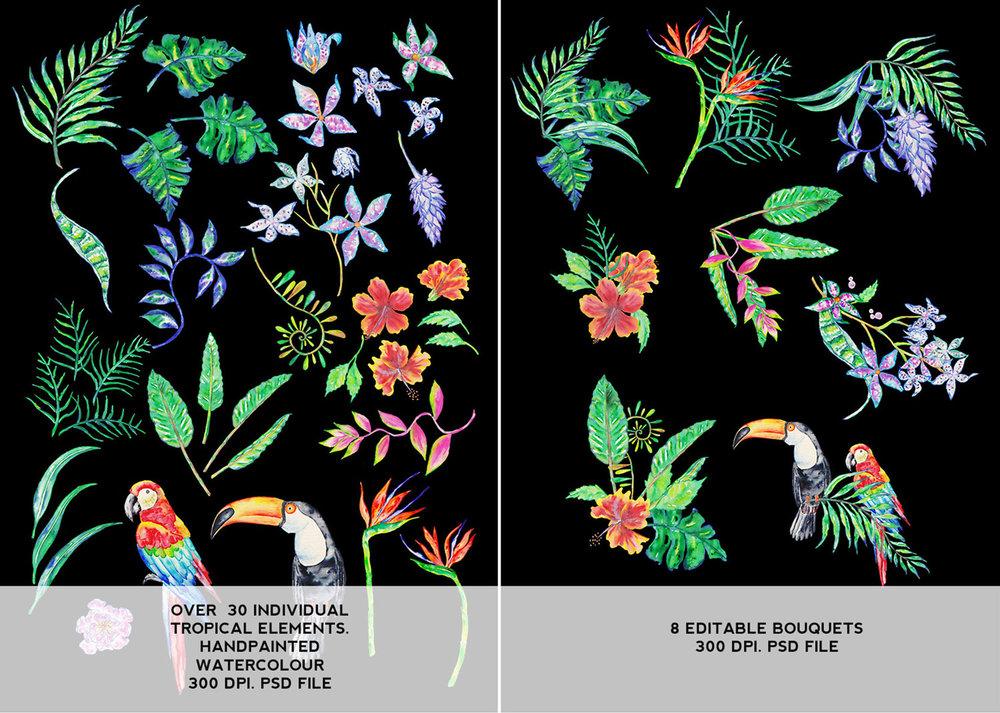 display-images-page-2-tropical-kit.jpg