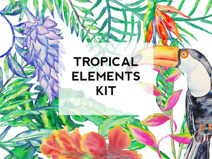 Tropical-rectangle--original-cover.jpg