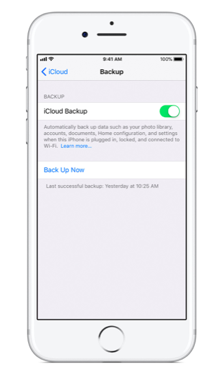 Tap iCloud Backup and then Back Up Now.
