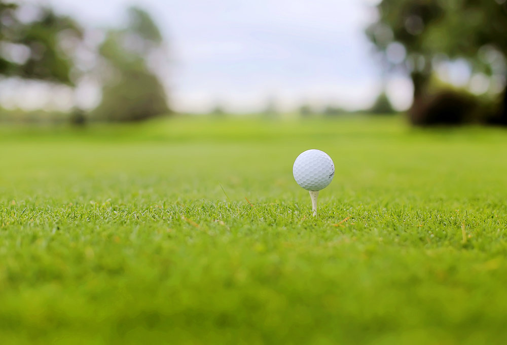 golf ball on tee.jpg