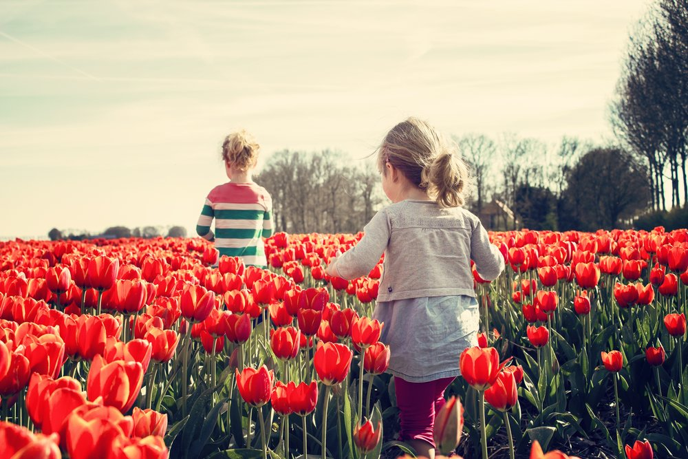girls-children-tulips-netherlands (3).jpg