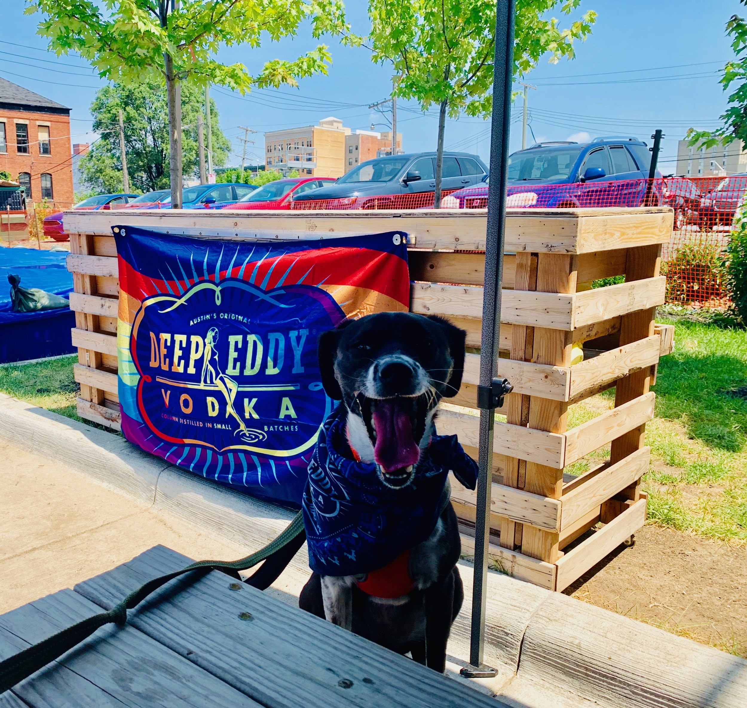 ENTERTAINMENT — Restaurant Collective & Beer Hall | Detroit