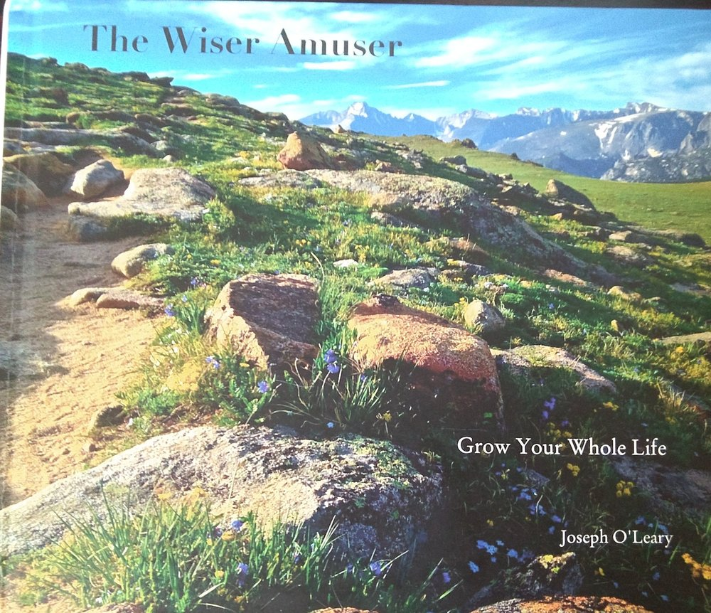 "Joe's Book ""The Wiser Amuser"""