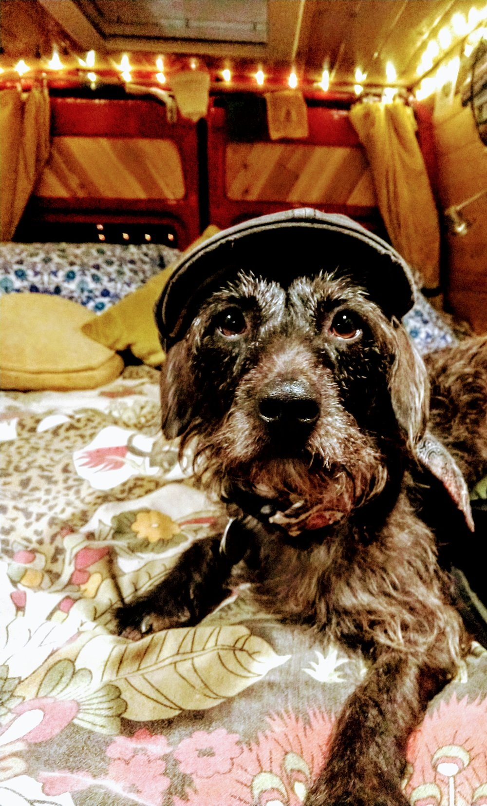 Pelé does not like this hat.