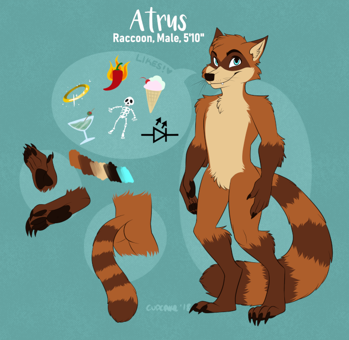 atruscoon_refsheet_dec2018_small.png