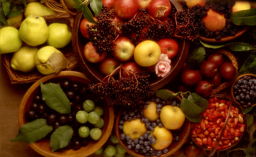 autumn fruits...jpg
