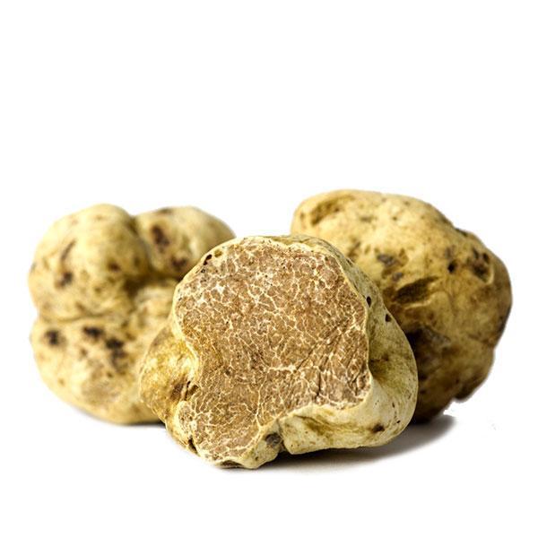 Fresh White Truffles (Tuber Magnatum Pico)