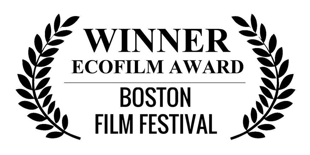 BOSTON-ECO-AWARD-REV.jpg