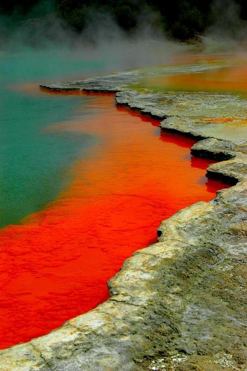 Here is one more stunning picture of New Zealand  - Rotorua - for you!
