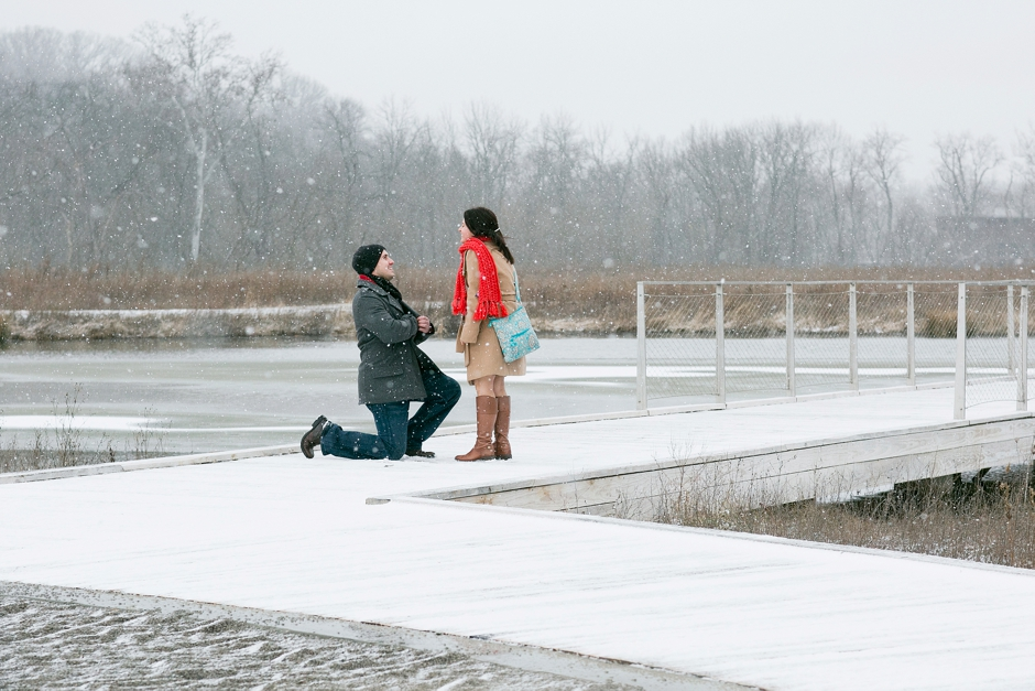 snowy-proposal-engagement-002