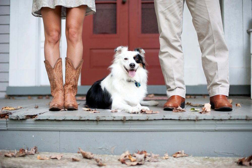 26-dog-farm-kentucky-engagement-picture.jpg