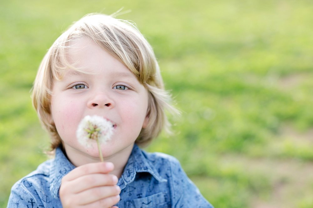 31-dandelion-child-picture-louisville.jpg