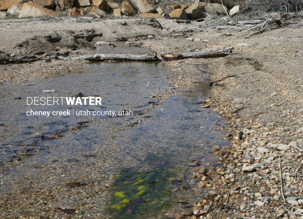 World Water Museum 5x767.jpg