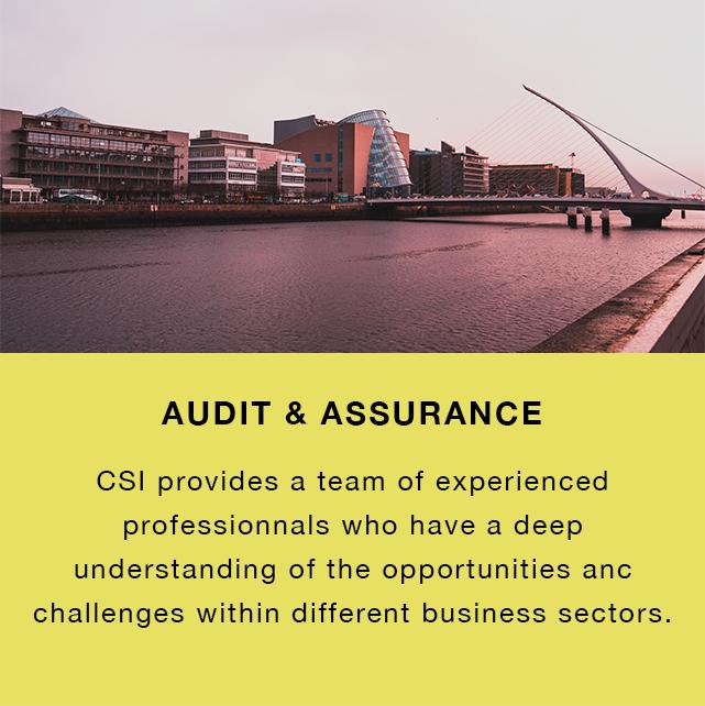 Audit & Assurance 2.jpg