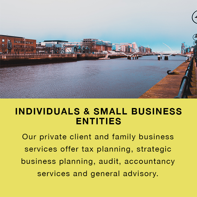 Individual and small business entities 2.jpg