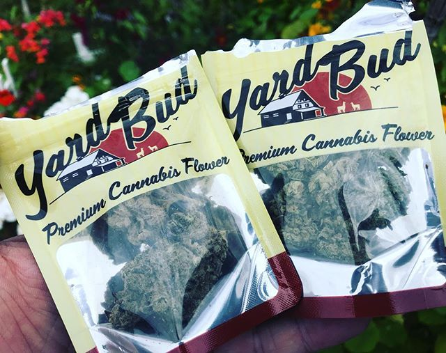 Spend Sunday in the Yard, Bud @mamaj_s #LegalizeIt @freedom_markets #Legalize #Dank #Cannabis #Joints #420 #710 #SWED #21+ #MMJ #Legit #Indo #YardBud
