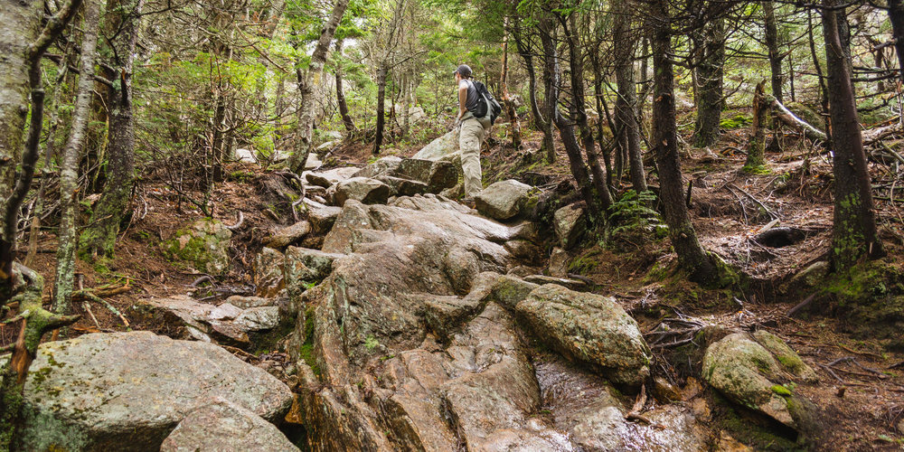 Liberty trail.jpg