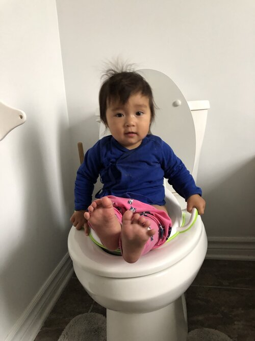 My 9-month-old using the big potty!
