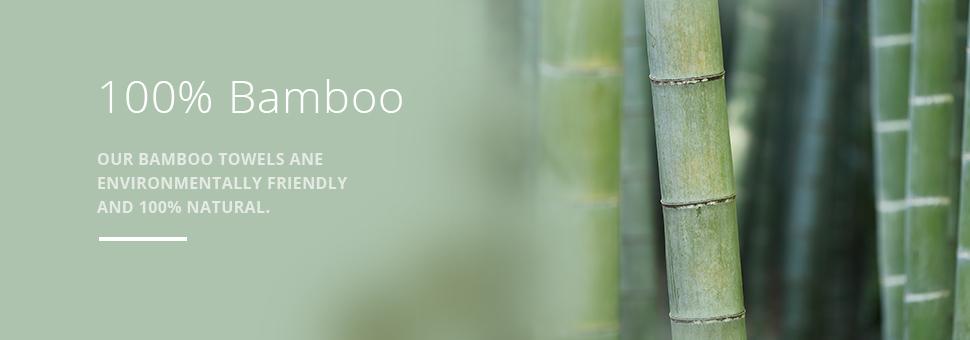 bamboo-main-banner.jpg