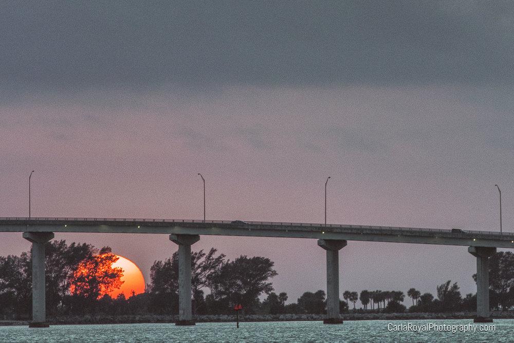 Clearwater, FL