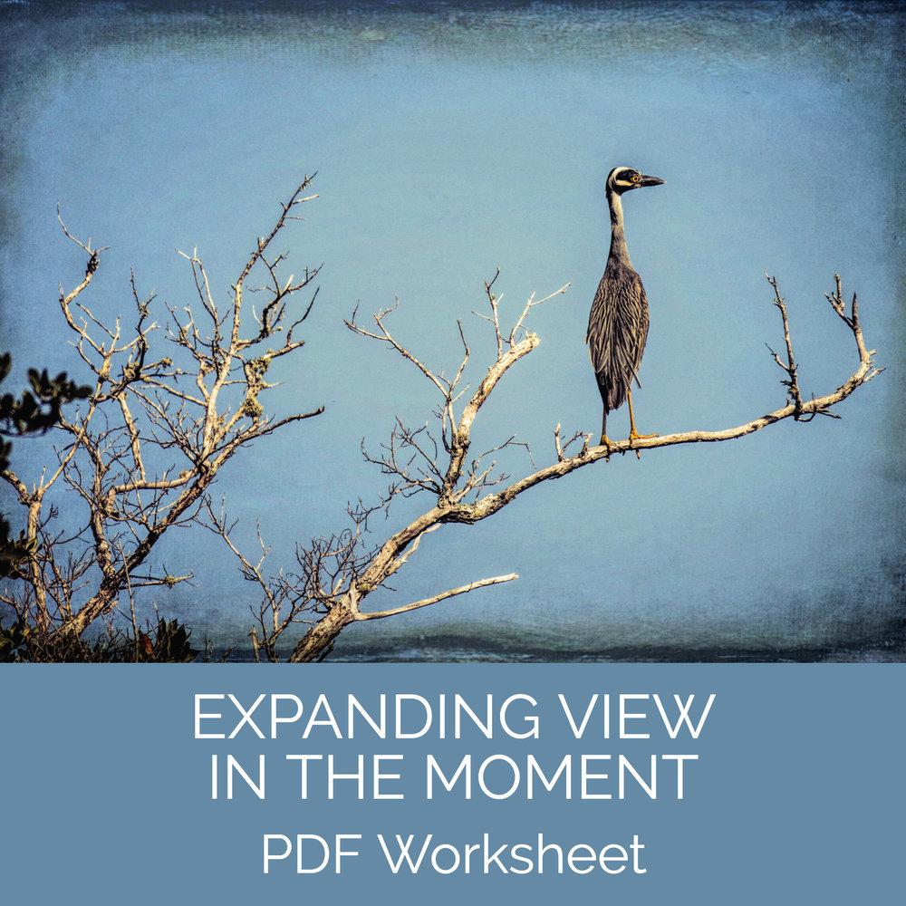 Expanding View.jpg