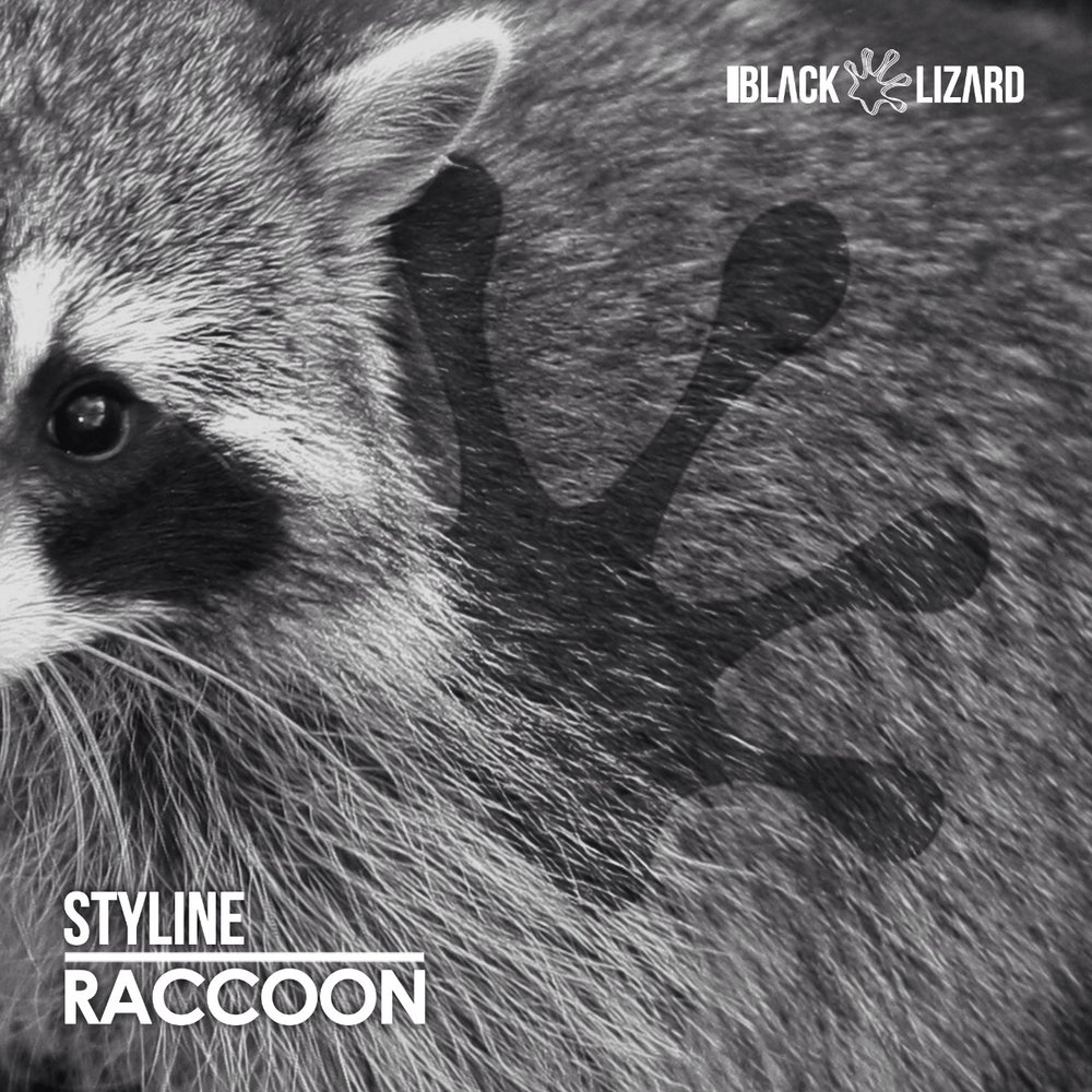 Copy of Copy of Raccoon