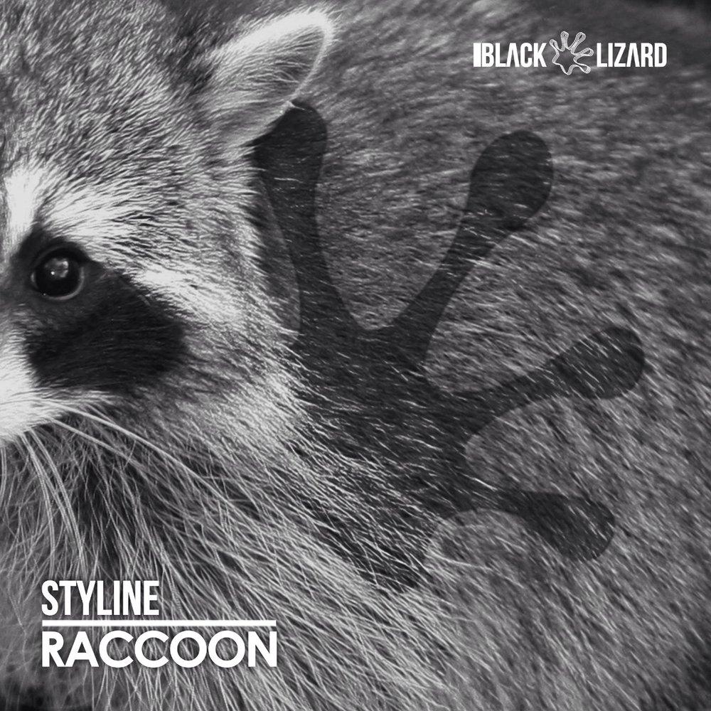 Copy of Raccoon