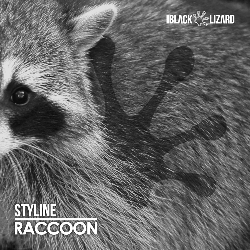 Styline - Raccoon