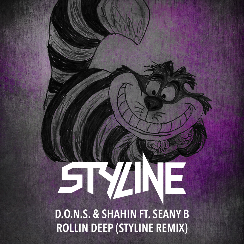 D.O.N.S. & Shahin ft. Seany B - Rollin Deep (Styline Remix).jpg
