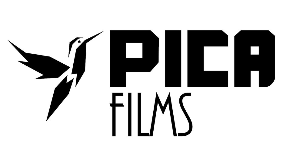 logo picafilms negro.jpg