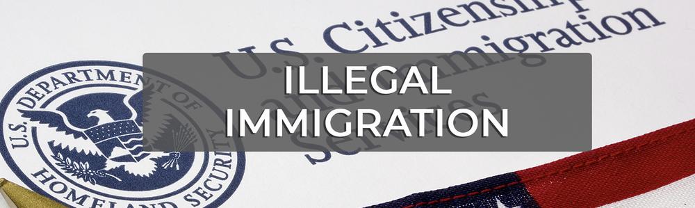 TysonWebsite_illegalimmigration.png