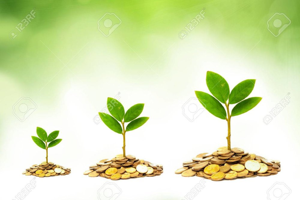 27465886-trees-growing-on-coins-csr-sustainable-development-economic-growth-trees-growing-on-stack-of-coins.jpg