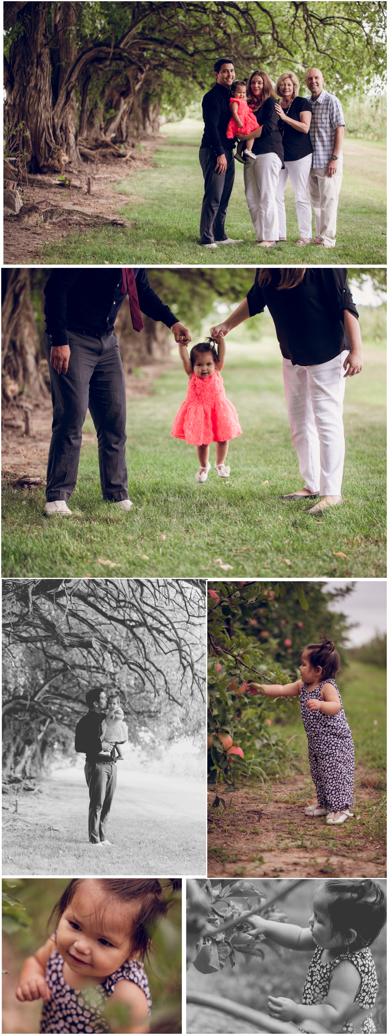 family photographer located in lafayette indiana