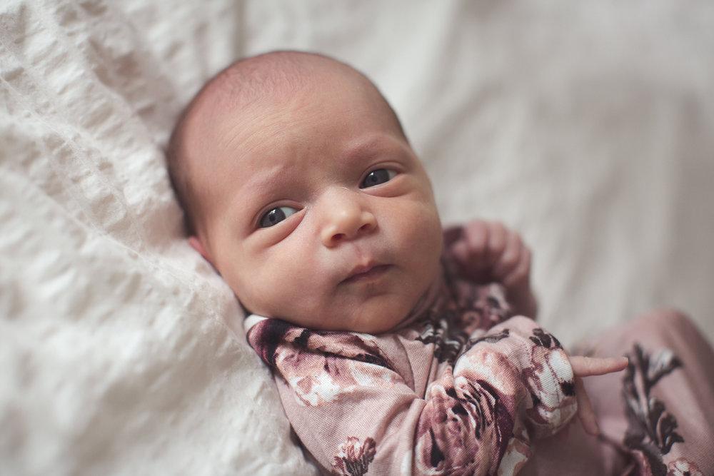 Izetta Newborn Photographer Lafayette Indiana-9.jpg