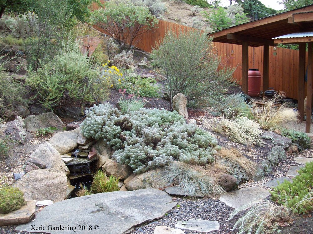 - Xeric Gardening was started in 2009 in Boise, Idaho, by Peggy Faith, who has been in the horticulture field for 25 years. We have been designing, installing, and maintaining gardens with lower water needs for residential and commercial clients in the Treasure Valley. We also do consultations. We install xeric lawns, but do not do lawn care. We can advise your lawn care provider in the care of xeric lawns. Most of our hardscaping is done by other contractors, but we are happy to help in the design.