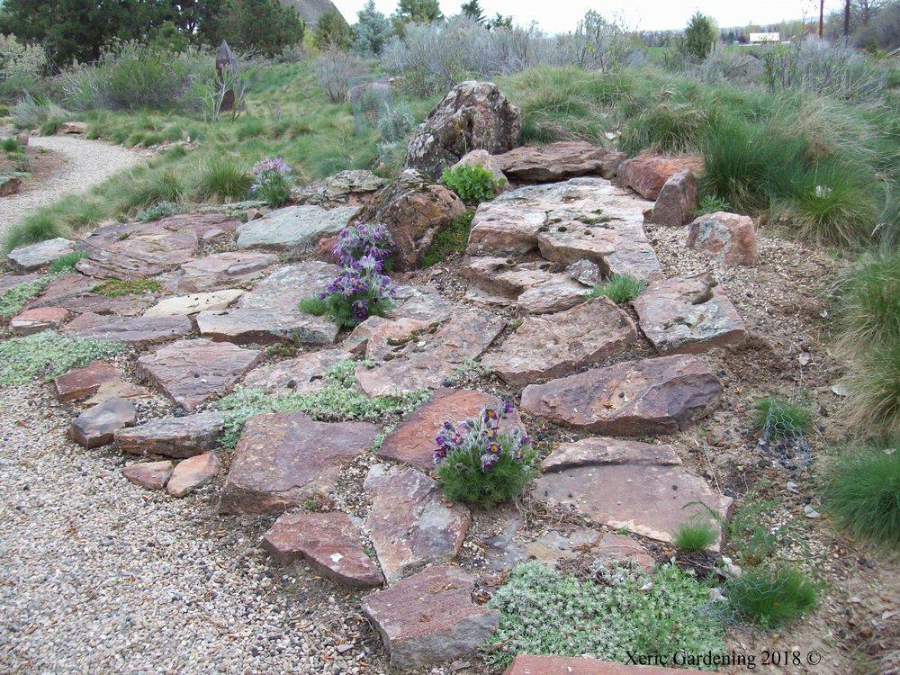 Buschert Rock Garden 3.JPG