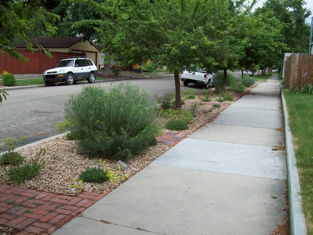 - In this example, the hell strips have bigger permanent gravel and taller plants. There is only occasional parking here, so taller plants won't be obstacles. Brick pathways have been installed to channel the foot traffic. The best way to keep the gravel pathways looking good is to use a blower regularly. Plants in this hell strip include Sulfur Buckwheat, Rabbitbrush, Great Basin Wild Rye, Yarrow, and Penstemon.