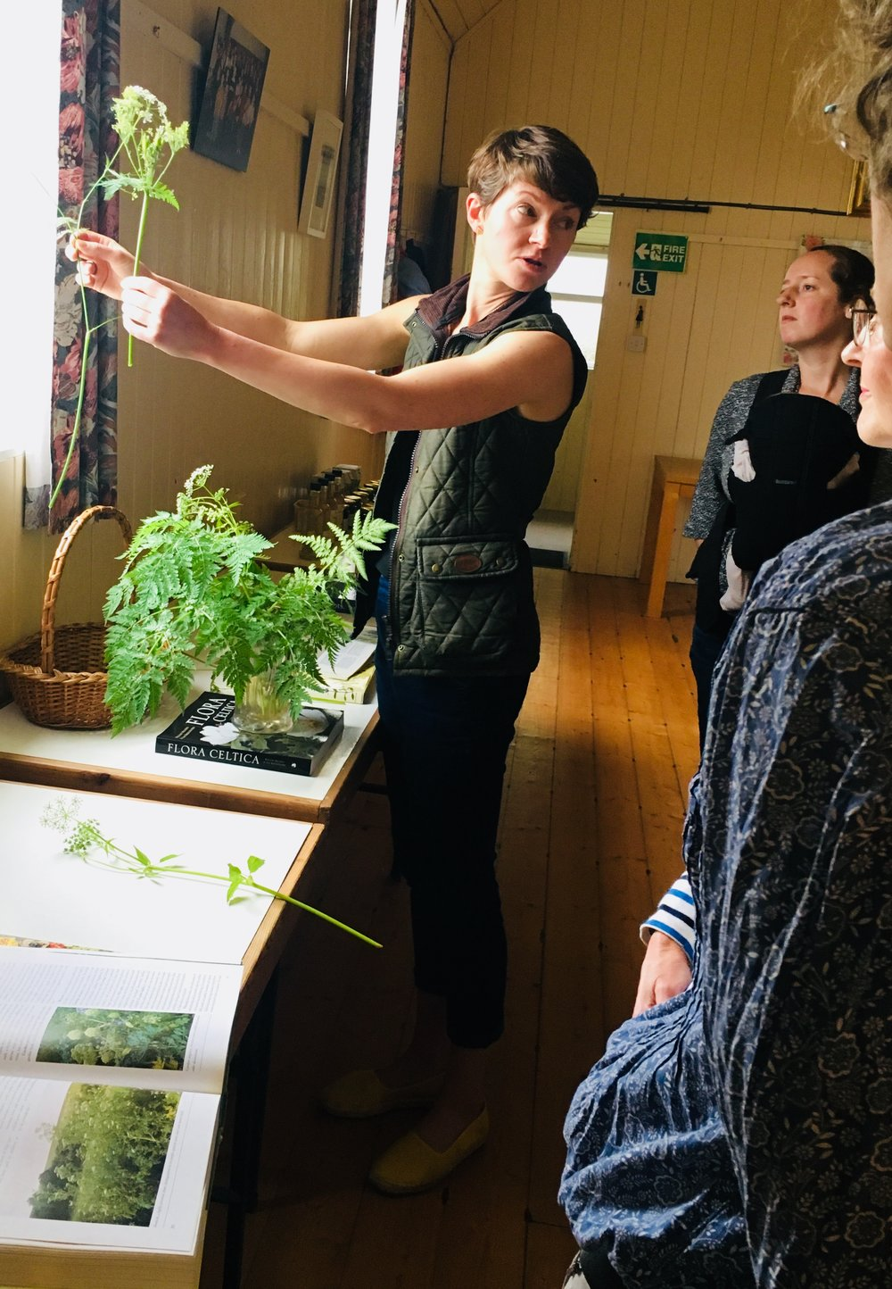 Me demonstrating basic plant identification skills at How and Why to Eat the Wild, Scottish Borders - June 2018