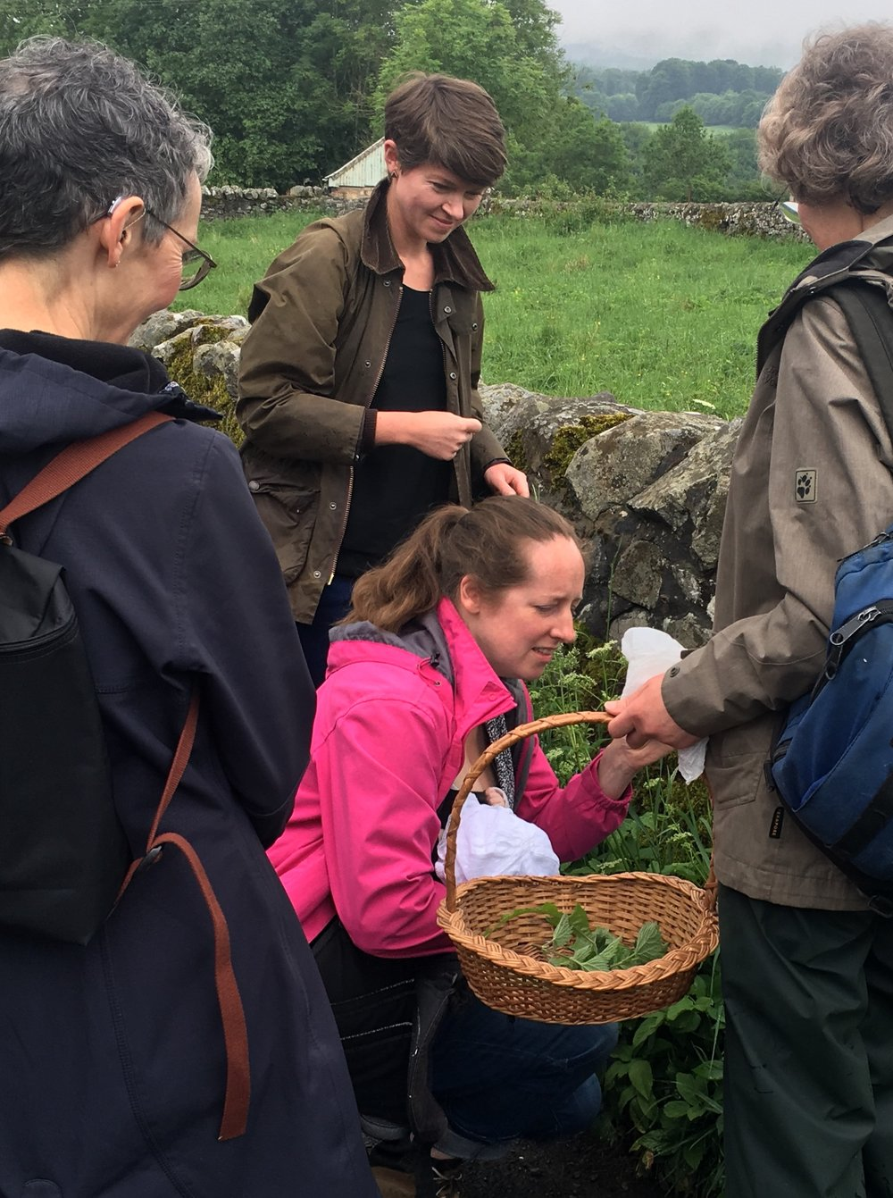 Learning how to be less afraid of getting nettle stings!