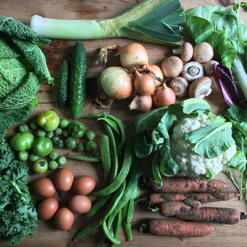 Can the UK provide enough vegetables for its growing vegan population?