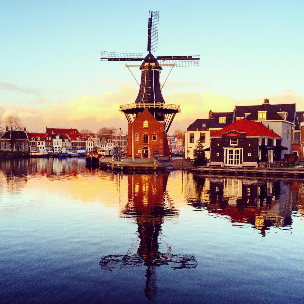 windmill haarlem2.jpg