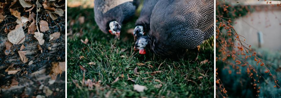 615-albuquerque-wedding-photographer-los-poblanos.jpg